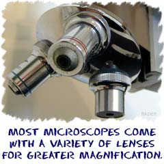 Most microscopes come with a variety of lenses for greater magnification